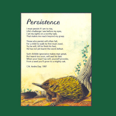 Life in Verse Magnet - Persistence