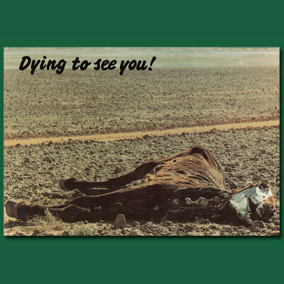 Dying to See You Postcard - CP20