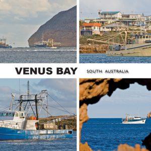 Venus Bay