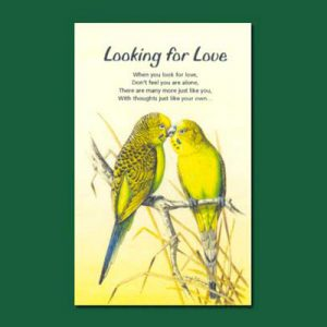 Greeting Card - Looking for Love